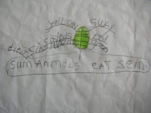 - by Amanda Showler (age 5)